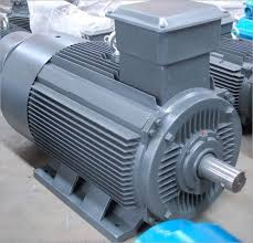 Squirrel Cage Induction Motor, squirrel cage motor, Squirrel Cage