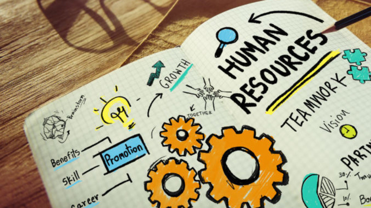 How Technology and Human Resources Can Relate, hr and technology