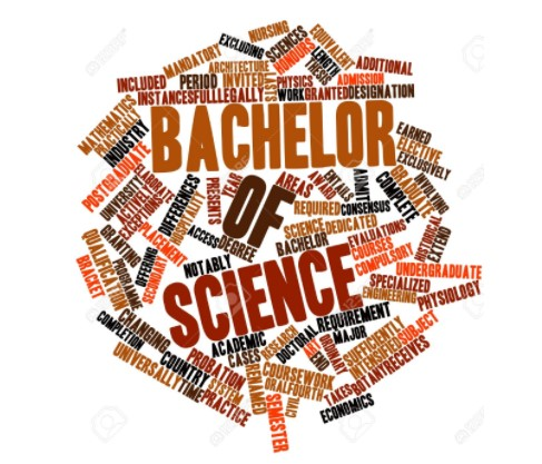 bachelor of science, BSc, bachelor of sciences, bachelor sciences, science bachelor