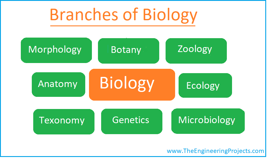 Biology, What is Biology, Biology Definition, Biology Branches, Biology Books, Biology Scientists, Biologists, Biology meaning